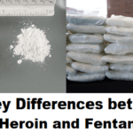 The Key Differences between Heroin and Fentanyl